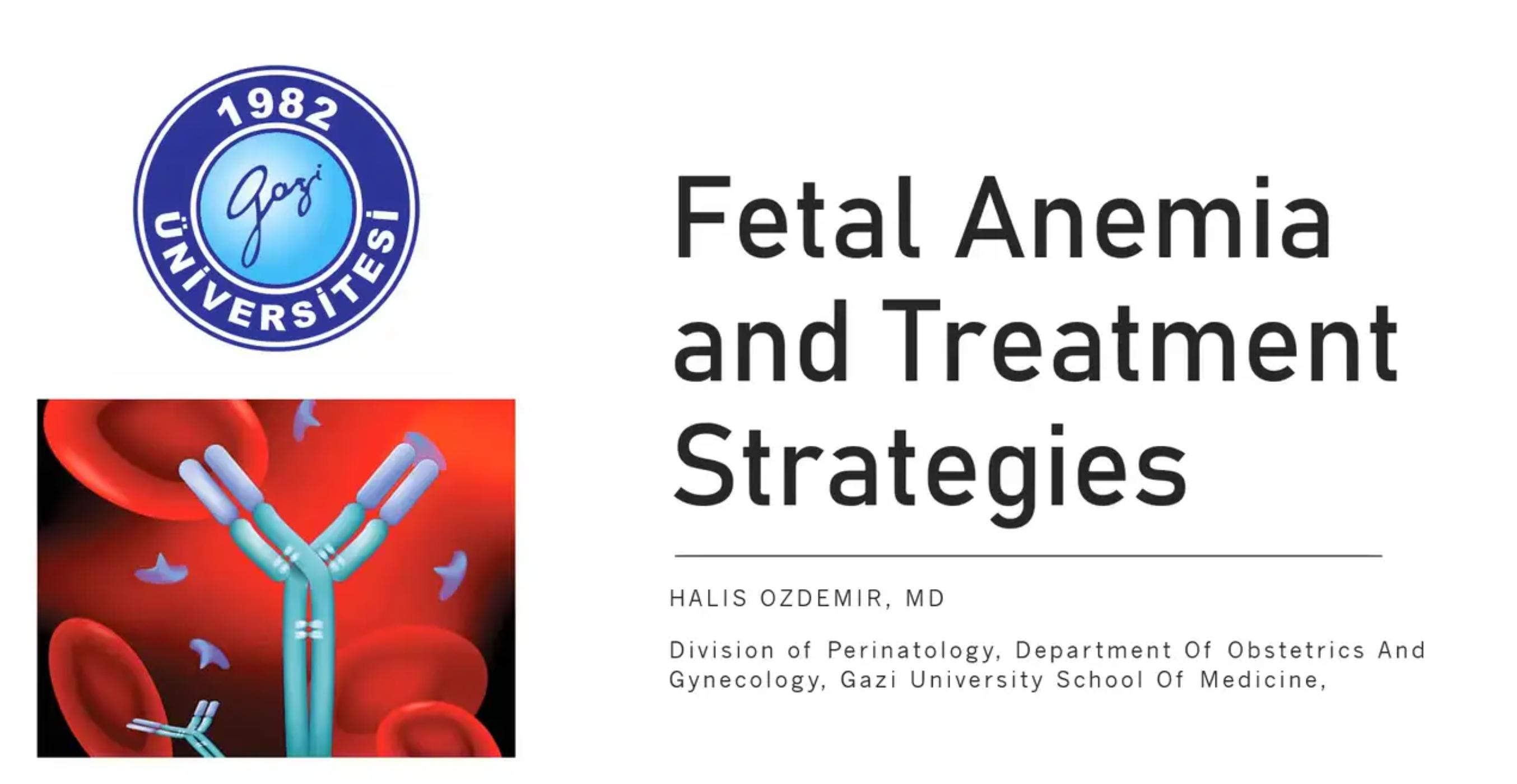 Fetal Anemia and Treatment Strategies