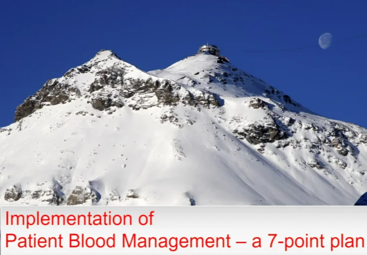 Implementation of Patient Blood Management - a 7-Point Plan